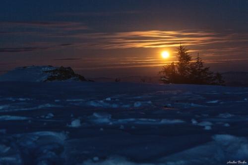 41 500x99999 - Plimbare de iarnă în Piatra Mare
