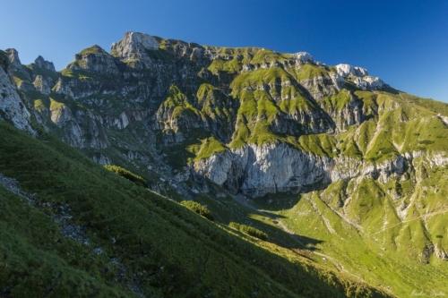 74 500x99999 - Bucegi Glacial Gardens of Summer