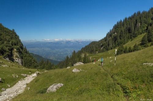 79 500x99999 - Bucegi Glacial Gardens of Summer