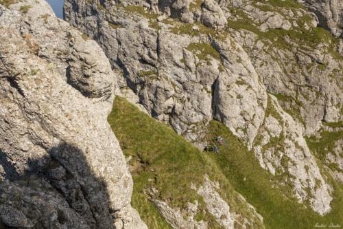 65 500x99999 - Bucegi: Ace și brâuri în Morar
