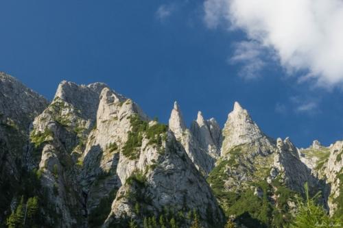 7 500x99999 - Bucegi: Ace și brâuri în Morar