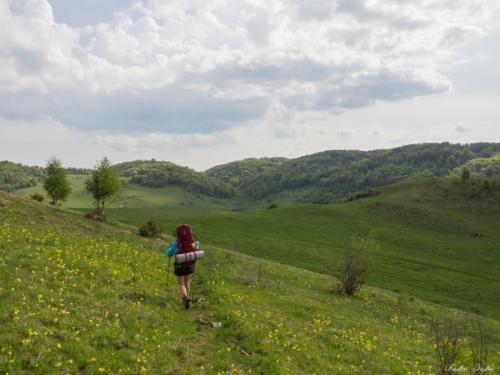 13 1 500x99999 - Vacanță în Trascău