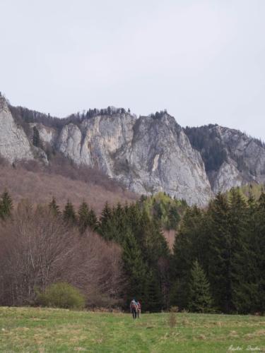 39 99999x500 - Verticale în Postăvaru: Muchia Panseluței și Muchia Căprioarei