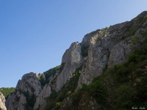 4 500x99999 - Vacanță în Trascau: Cheile Turzii și Bedeleu