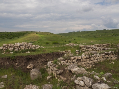 41 500x99999 - Istorie și maci în Dobrogea, spre Adamclisi