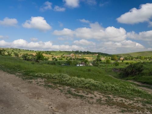 57 500x99999 - Istorie și maci în Dobrogea, spre Adamclisi