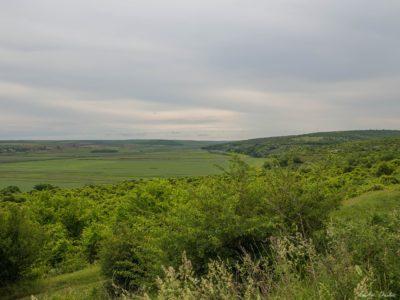 8 400x300 - Istorie și maci în Dobrogea, spre Adamclisi