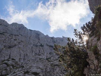 11 400x300 - Verticale în Piatra Craiului: Frontalul Dianei și Canionul Ciorânga