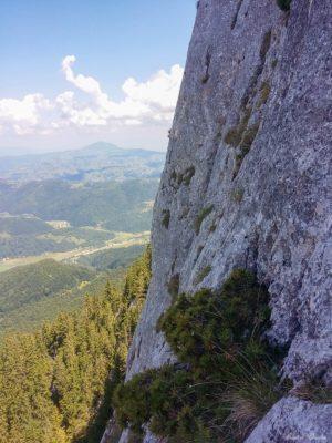 17 300x400 - Verticale în Piatra Craiului: Frontalul Dianei și Canionul Ciorânga