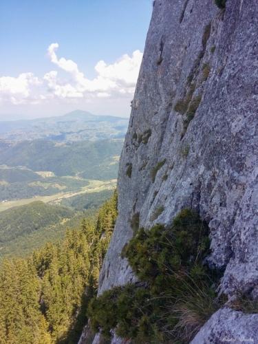 17 99999x500 - Verticale în Piatra Craiului: Frontalul Dianei și Canionul Ciorânga