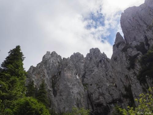 23 1 500x99999 - Brâul de Mijloc nordic, Piatra Craiului