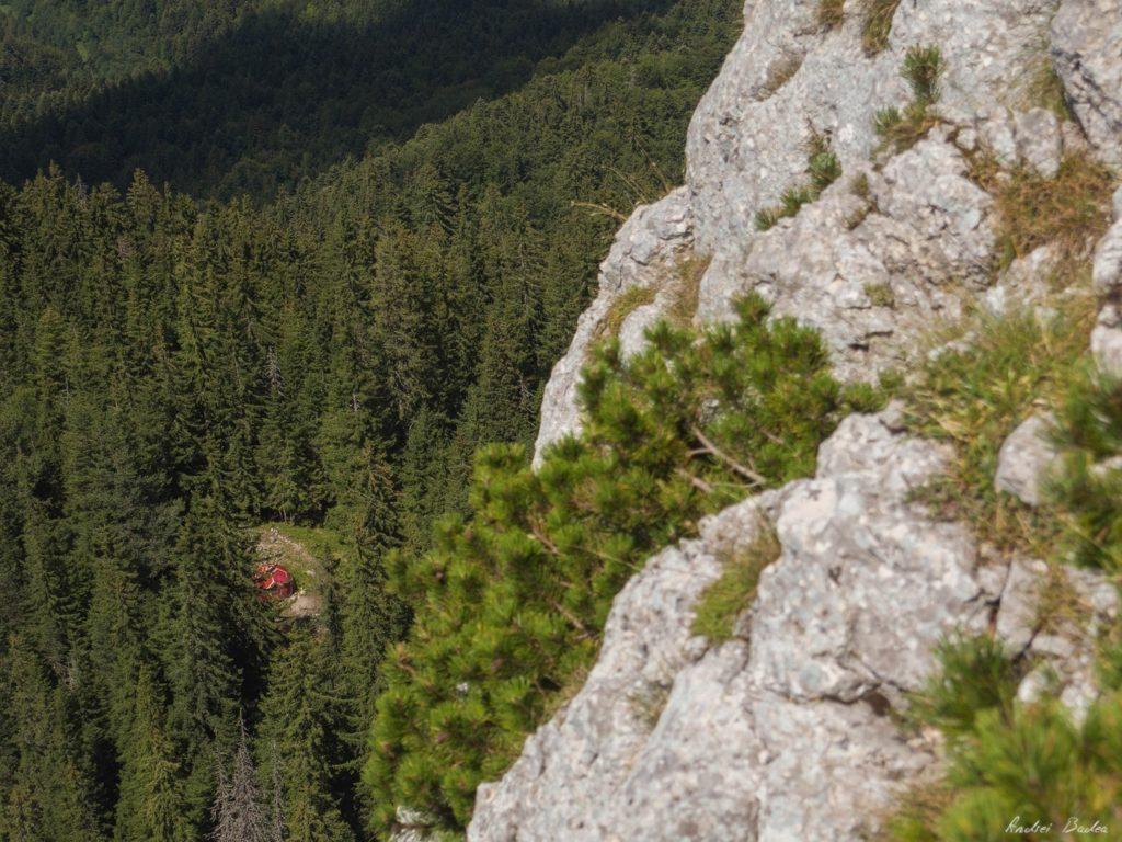 23 - Verticale în Piatra Craiului: Frontalul Dianei și Canionul Ciorânga