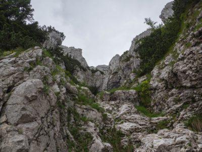 26 1 400x300 - Brâul de Mijloc nordic, Piatra Craiului