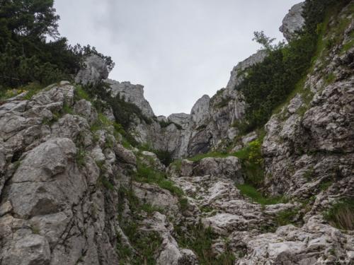 26 1 500x99999 - Brâul de Mijloc nordic, Piatra Craiului