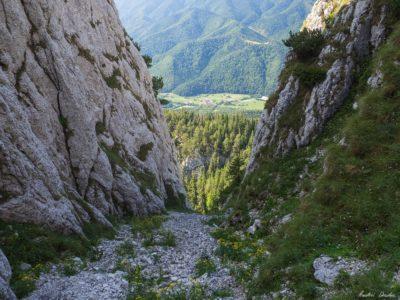 33 400x300 - Verticale în Piatra Craiului: Frontalul Dianei și Canionul Ciorânga