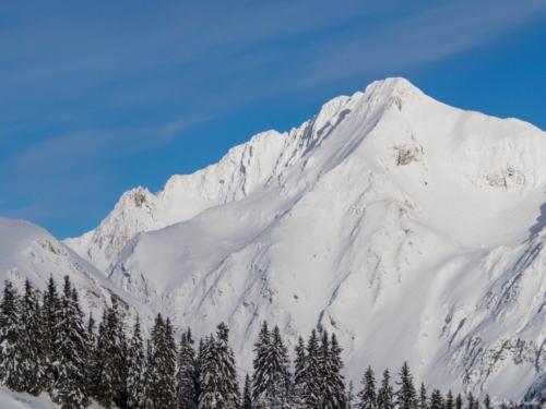 17 scaled 500x99999 - Pe munte cu Back to Nature, în 2019