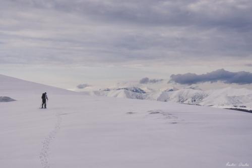 25 1 scaled 500x99999 - Pe munte cu Back to Nature, în 2019