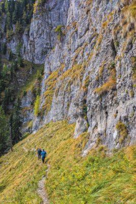 5 5 267x400 - Pe munte cu Back to Nature, în 2019