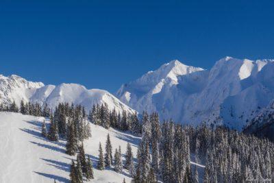 6 1 400x267 - Pe munte cu Back to Nature, în 2019