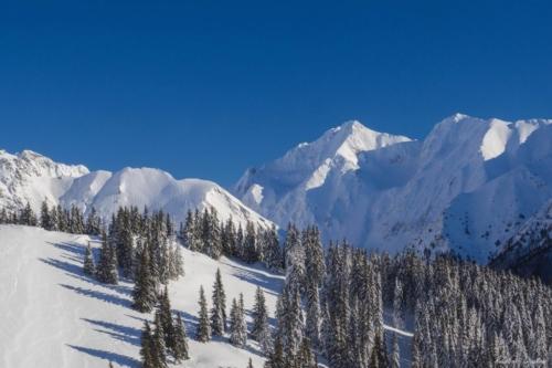 6 1 scaled 500x99999 - Pe munte cu Back to Nature, în 2019