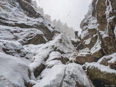 7 6 400x300 - Pe munte cu Back to Nature, în 2019