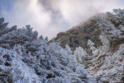 7 7 400x267 - Pe munte cu Back to Nature, în 2019