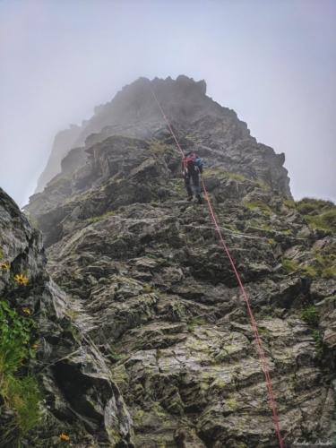 10 scaled 99999x500 - Vartopel - Arpasel, muntii Fagarasului