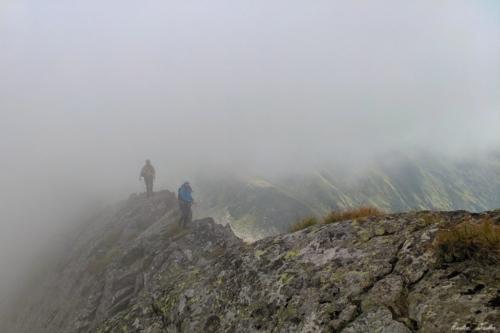 15 scaled 500x99999 - Vartopel - Arpasel, muntii Fagarasului