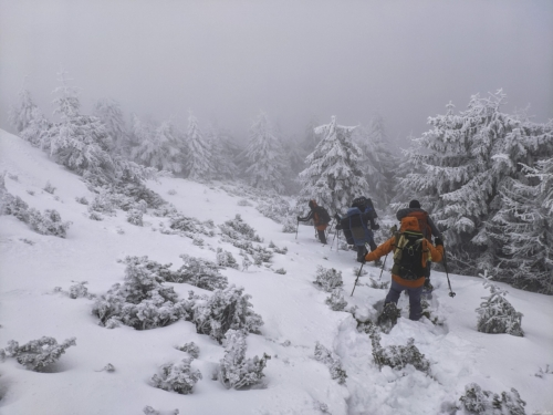 1 3 scaled 500x99999 - Lider Montan Internațional - modulele de iarnă