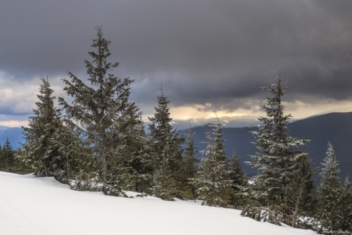 11 500x99999 - Lider Montan Internațional - examinare de iarnă