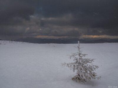12 400x300 - Lider Montan Internațional - examinare de iarnă