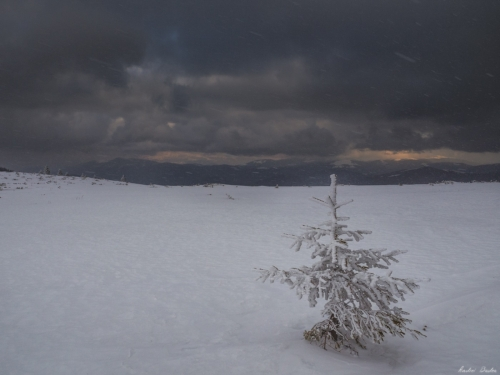 12 500x99999 - Lider Montan Internațional - examinare de iarnă