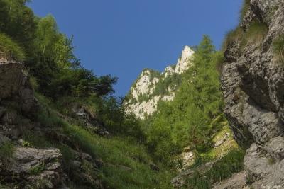 Fascinanții Bucegi: Seaca Jepilor și poteca Răducului