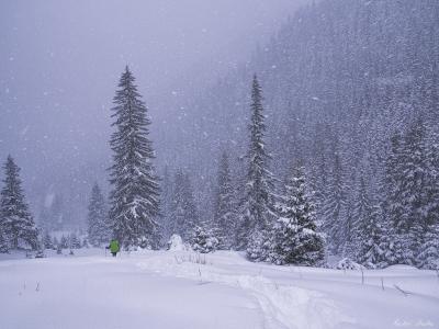 Întâlnirea de iarnă carpați.org. Făgărași