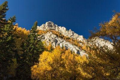 Tainele Bucegilor: La plimbare pe Brâna Aeriană
